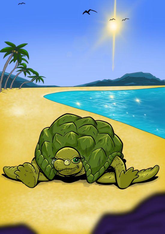Dag 25 – Skildpadden
